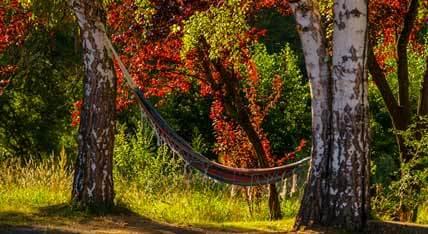 Se détendre en Auvergne