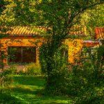 Camping in der Natur in der Auvergne